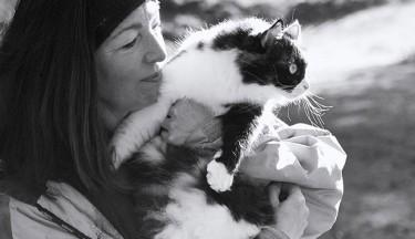 Energy Healing for Animals Fundamentals
