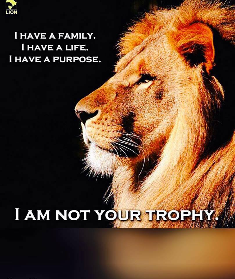 I am not your trophy