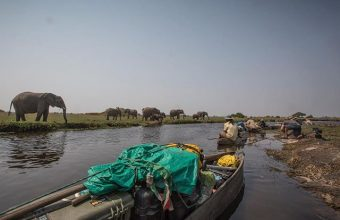 Into-the-Okavango