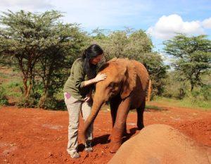 joan and elephant