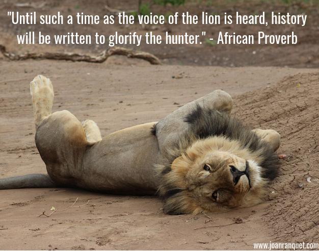 lion blog1.2