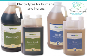 Electrolytes for humans and horses